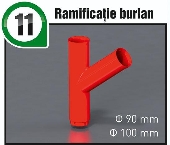 11-RamificatieBurlan