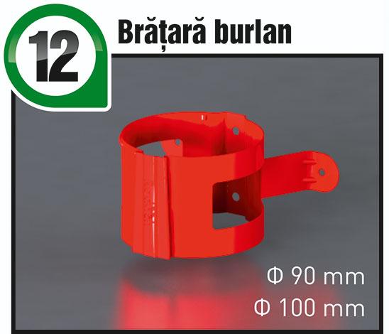 12-BrataraBurlan